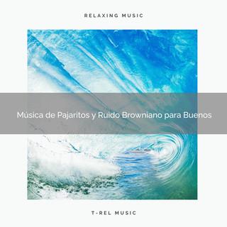 Música De Pajaritos Y Ruido Browniano Para Buenos