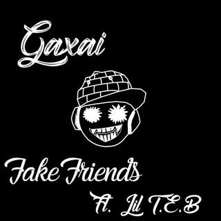 Fake Friends (Feat. Lil T.E.B)