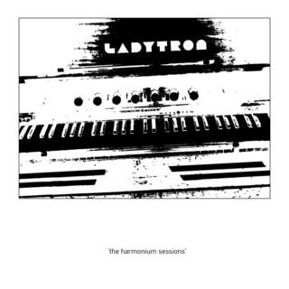 The Harmonium Session (Exclusive)