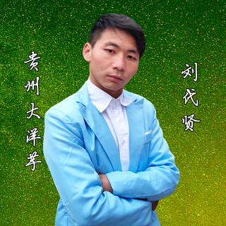 貴州大洋芋(DJ版)