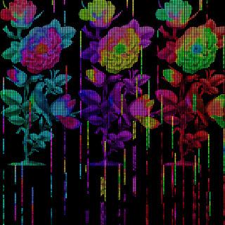 Bloom Innocent (Horizontalism Sessions)