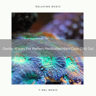 Gentle Waves For Perfect Meditation Hard Days Chill Out