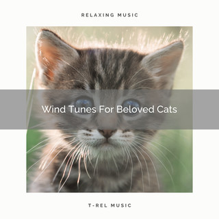 Wind Tunes For Beloved Cats