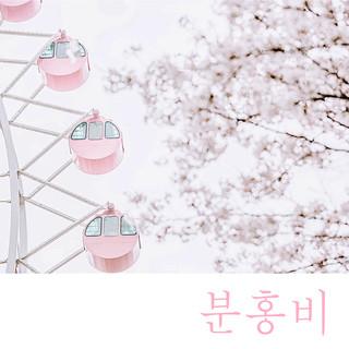 星期三樂團:粉紅雨