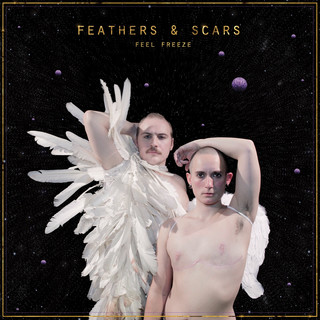 Feathers & Scars