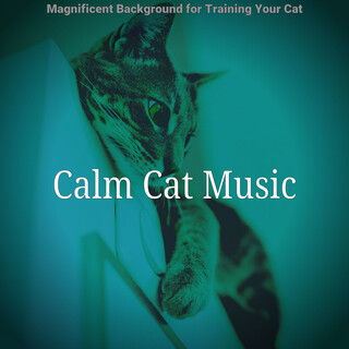 Magnificent Background For Training Your Cat