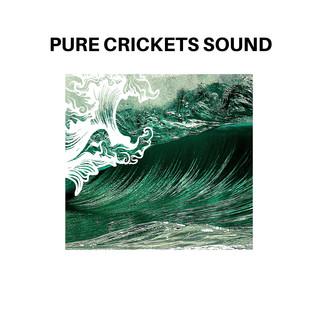 Pure Crickets Sound