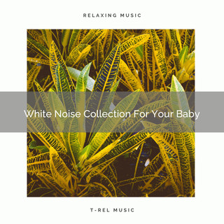 White Noise Collection For Your Baby