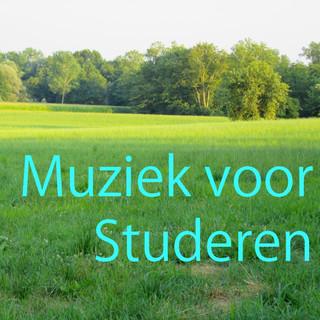 Muziek Voor Studeren Vol. 1