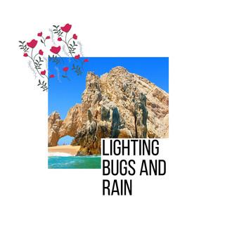 Lighting Bugs And Rain