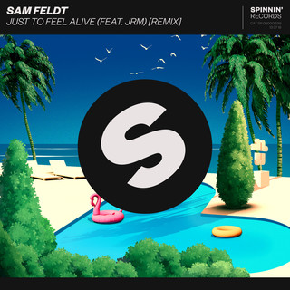 Just To Feel Alive (Feat. JRM) (Remix)