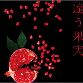 違う果実 / 不埒な体温 (Chigaukajitsu / Furachinataion)